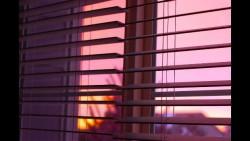 automatisatie-rolluiken-en-zonwering-domotica-zomer